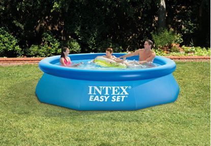 Picture of Intex 10ft X 30in Easy Set Pool Set
