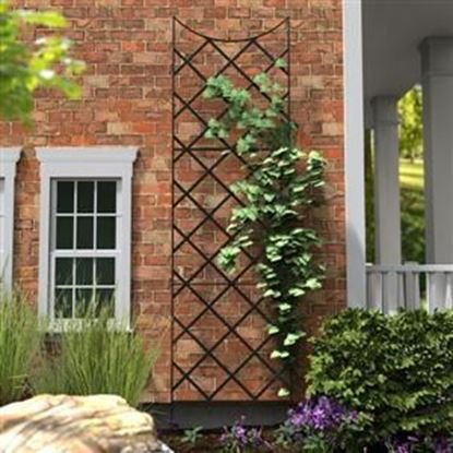 Picture of Garden Trellis