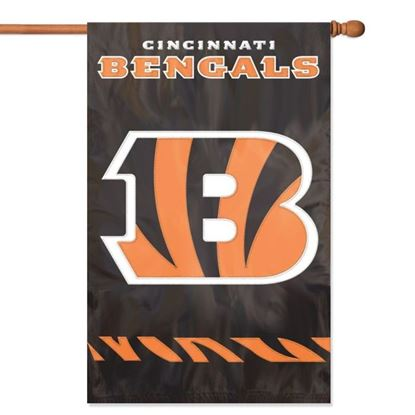Picture of NFL Applique Banner Flag