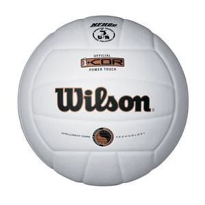 Picture of I-COR Power Touch Volleyball